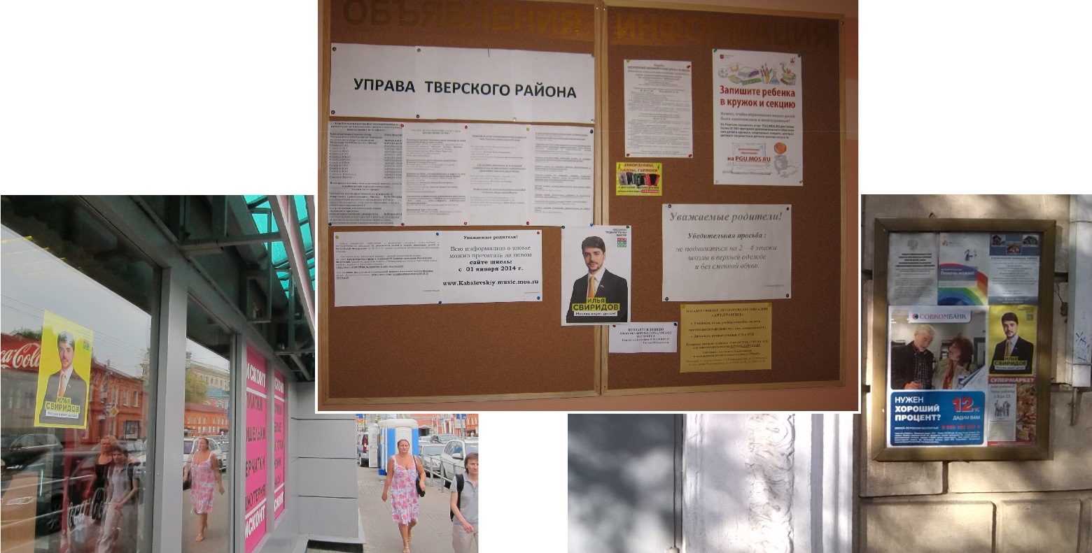 Агитация Ильи Свиридова 2014