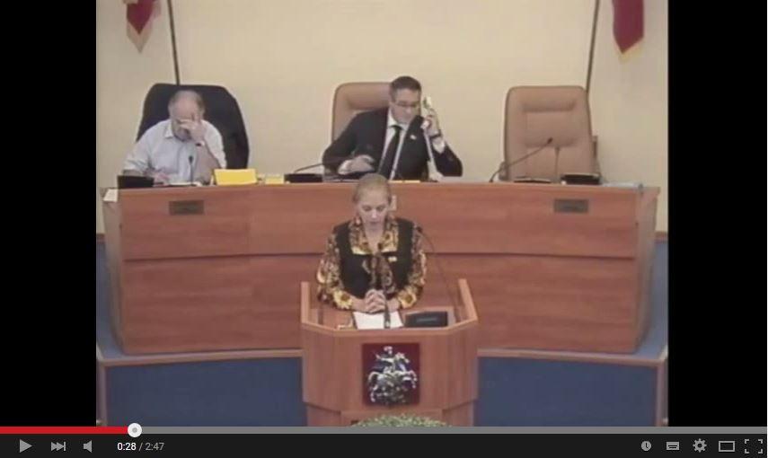 Мосгордума: выступление Е.А.Шуваловой по Законопроекту о коммуникациях