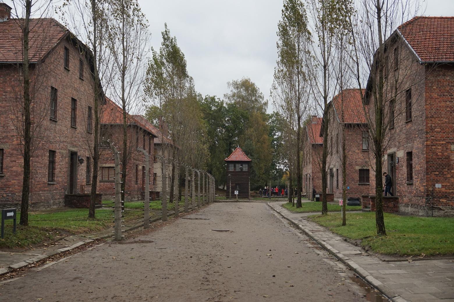 Здания в Аушвице